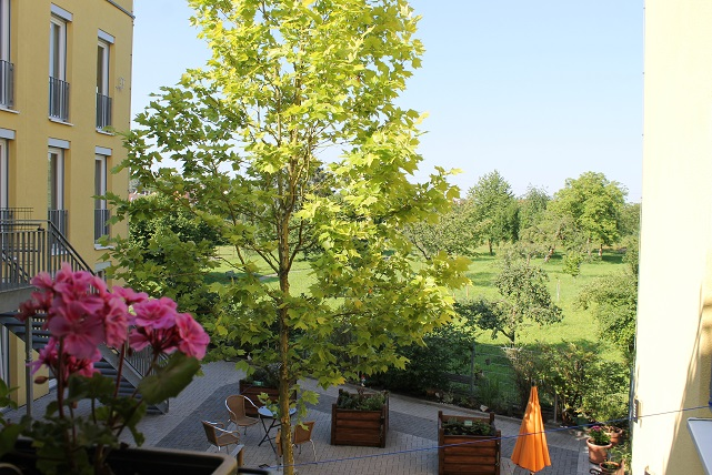 ASB-KA_Homepage_Josefshaus-Ubstadt_gruene-Aussicht.jpg